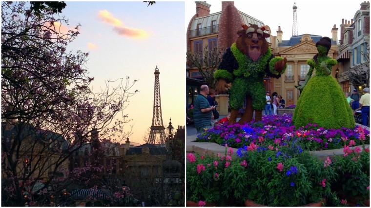 Flower & Garden Fest