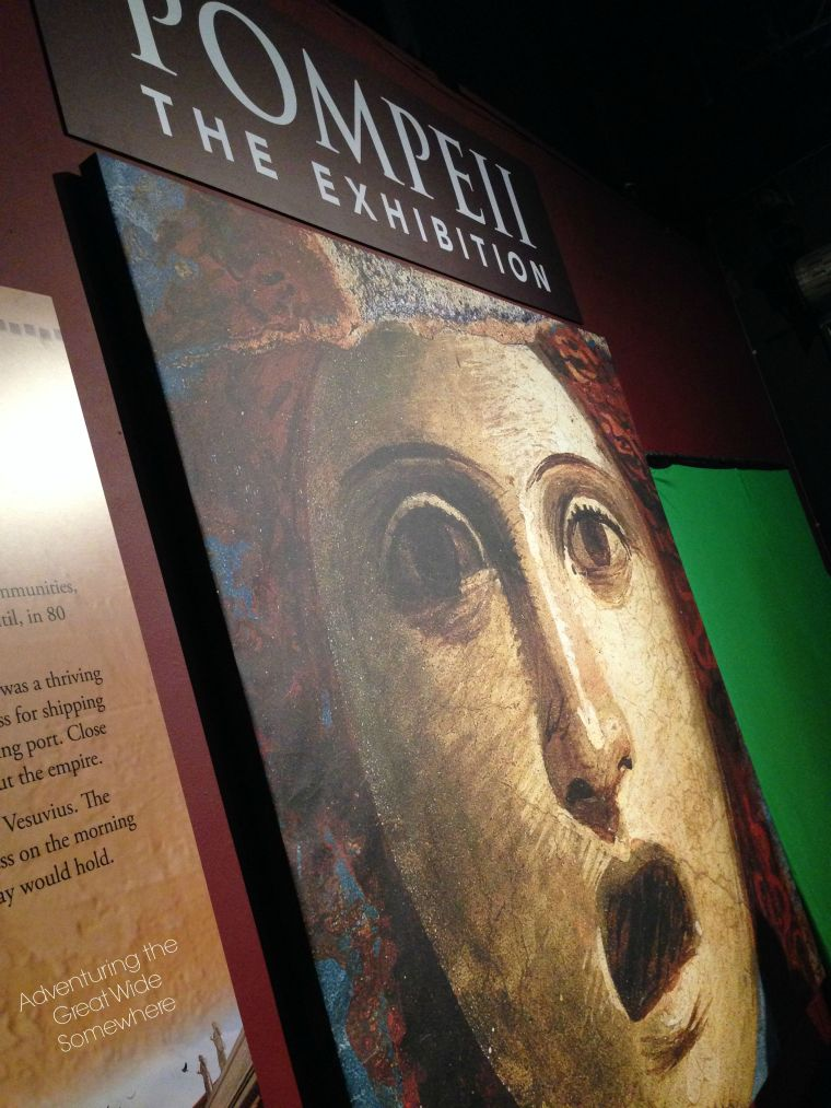 Pompeii Exhibition Entry