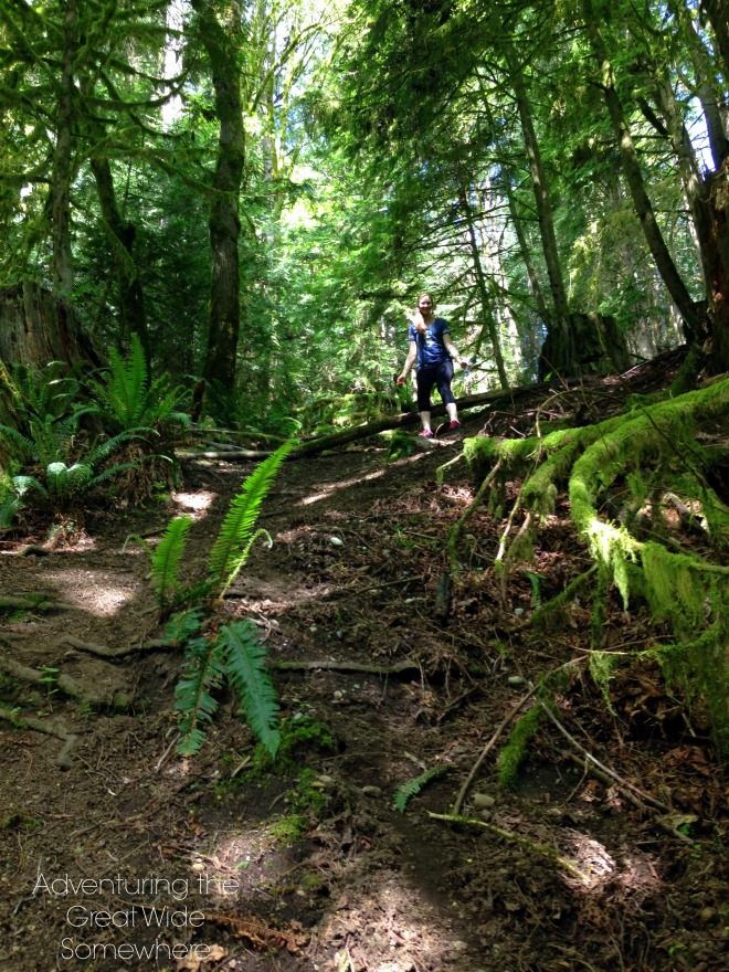 Getting off the Puget Loop Trail