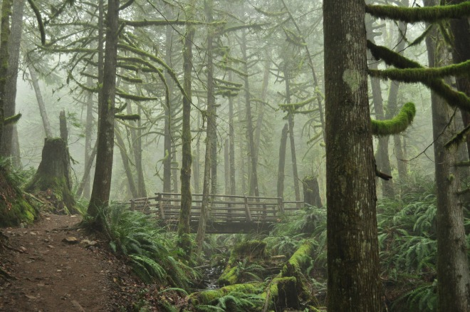 Wallace_Falls_State_Park_06