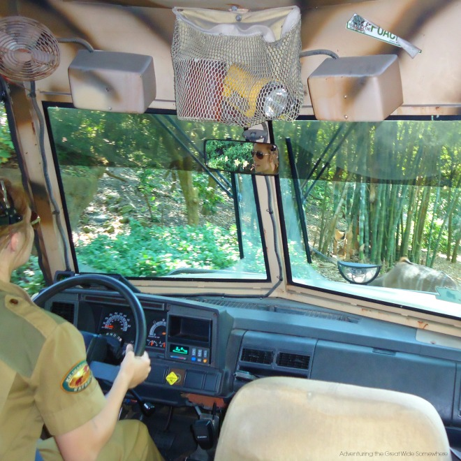 Behind the Wheel of Kilimajaro Safaris