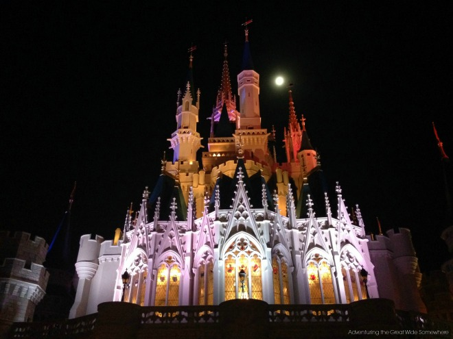 Cinderella Castle in the Moonlight