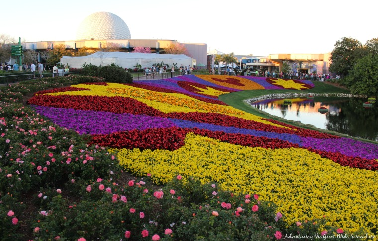 Beautiful Blooms at the Epcot Flower & Garden Festival.jpg