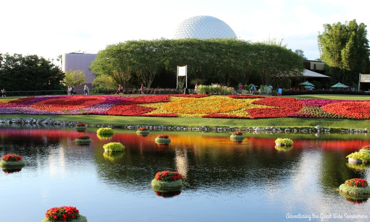 Beautiful Spring Flowers at the Epcot Flower and Garden Festival
