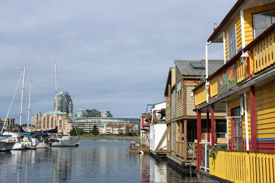 Beautiful Harbor Views in Fisherman's Wharf, Victoria B.C.
