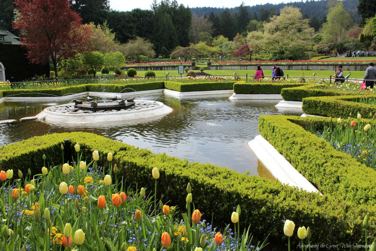 Beautiful Star Fountain at Canada's Butchart Gardens