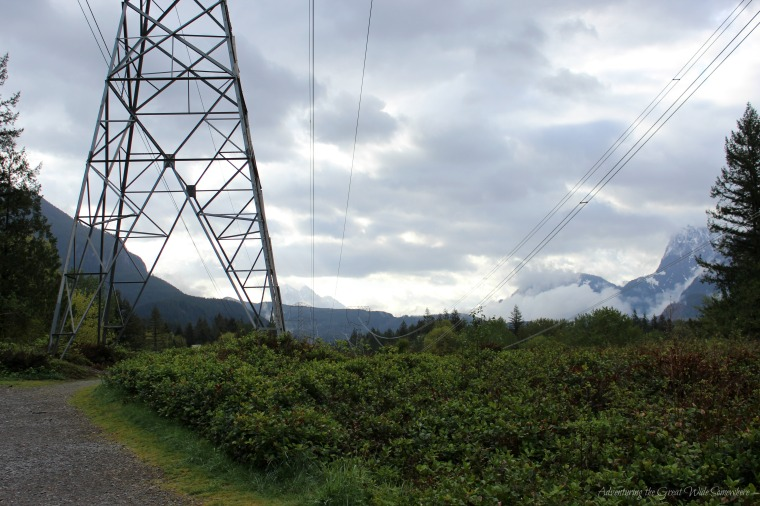 Buzzing Power Lines At the Wallace Falls Trailhead