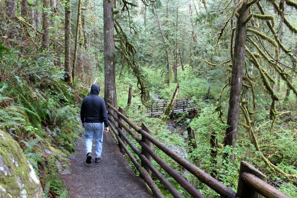 Dad on an Early Morning Hike to Wallace Falls.jpg