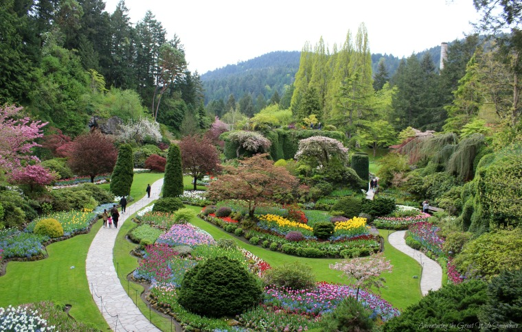 The Beautiful Sunken Garden in Spring, Located at the Butchart Gardens in Victoria, B.C.