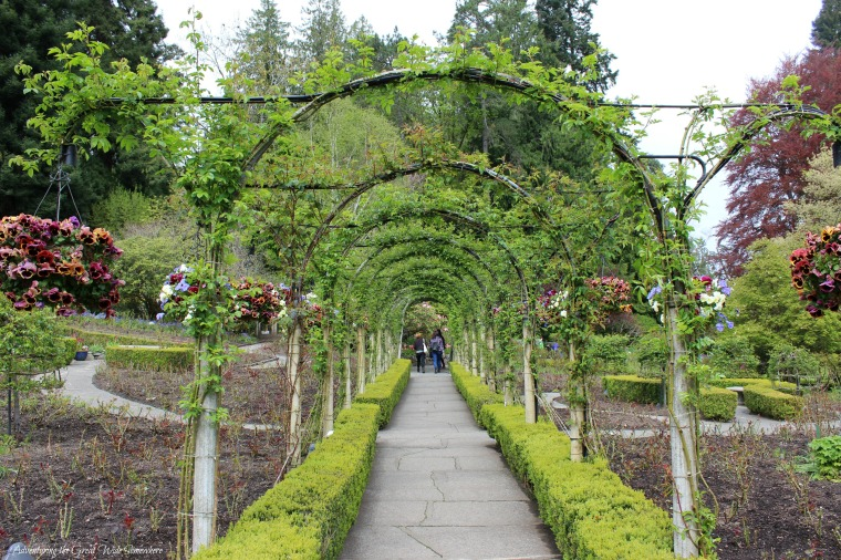 A Leafy Arch at the Butchart Gardens in British Columbia