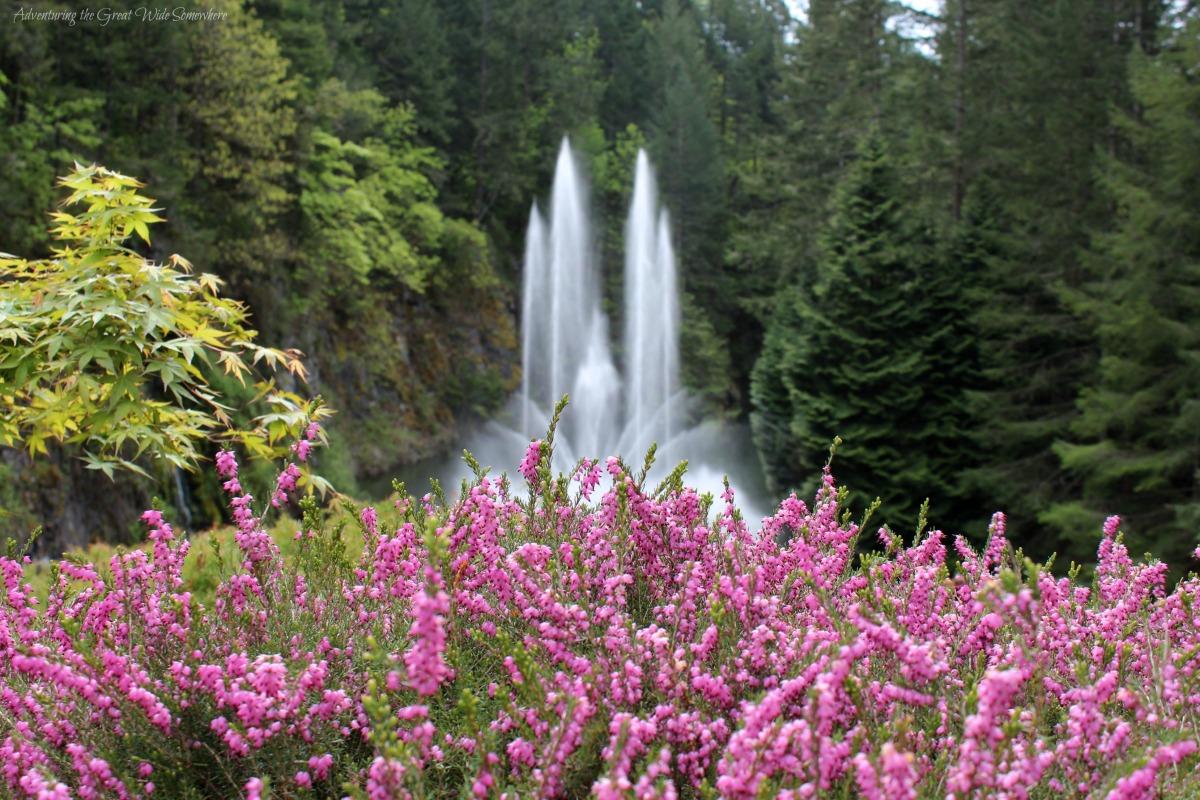 Beautiful Dancing Fountain at Butchart Gardens, B.C.