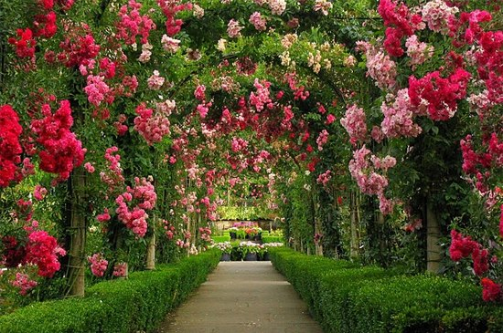 Butchart-Gardens-British-Columbia-Canada