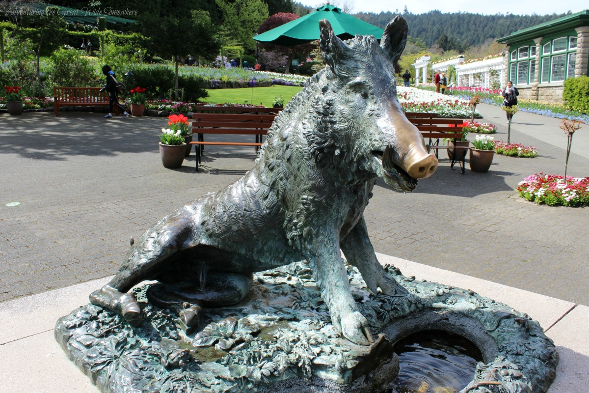 Sexy Boar Statue at the Butchart Gardens.jpg