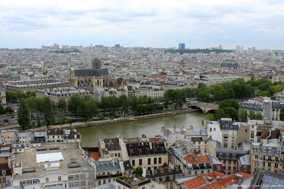 the-beautiful-bridges-and-rooftops-of-paris-seen-from-the-top-of-notre-dame-de-paris