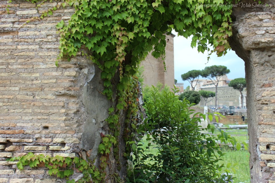 peering-through-the-stone-walls-of-the-roman-forum-now-covered-in-greenery